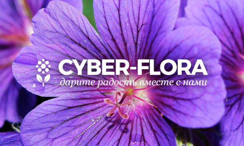 Logo Design for Flower Delivery Service with Online Store Cyber-Flora