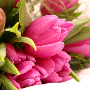 HTML coding of Moscow Flower Delivery MFDS Web Design Sketches
