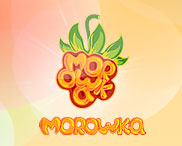 Web Design and its HTML Coding for the Forum on CMS PunBB for Graphic Developing Website Morowka